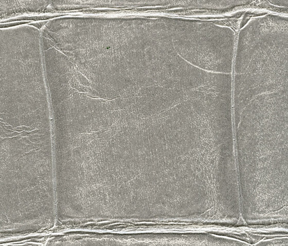 Anguille big croco galuchat VP 423 04 di Elitis | Carta parati / tappezzeria