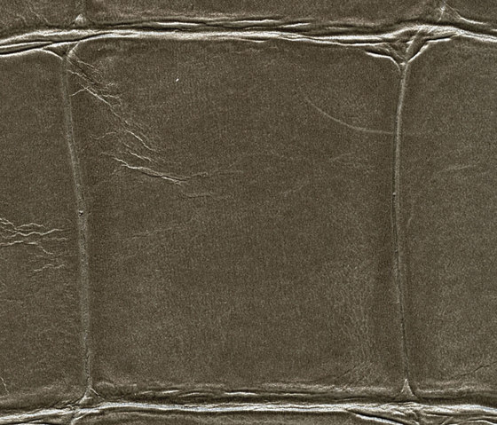 Anguille big croco galuchat VP 423 12 di Elitis | Carta parati / tappezzeria