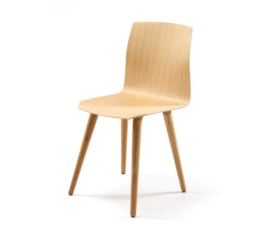 Nea chair by Freifrau Sitzmöbelmanufaktur | Restaurant chairs