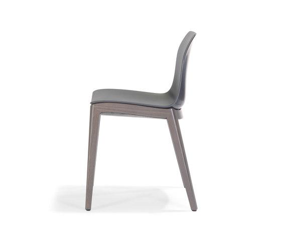 Kaori Chair W by Accademia | Restaurant chairs