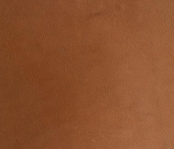 Alpaca Choco von Montis | Farbe einfarbig/uni