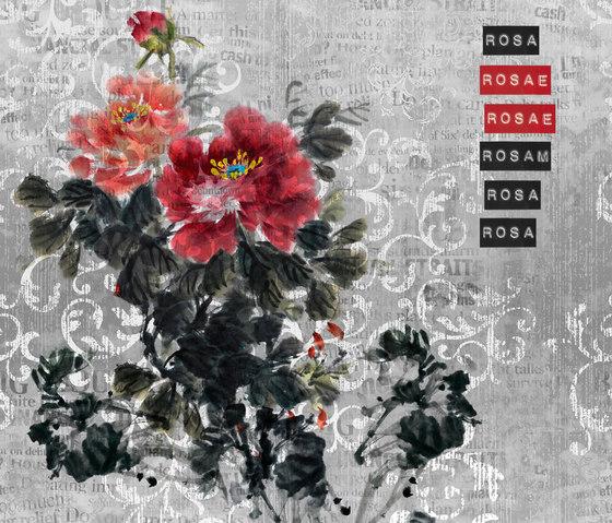 Rosa Rosae by Wall&decò | Wall coverings