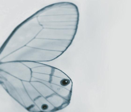 Tiny Wing de Wall&decò | Revêtements muraux / papiers peint