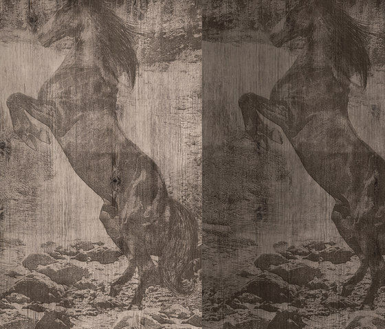 El Caballo de Andy by Wall&decò | Wall coverings / wallpapers