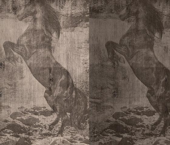 El Caballo de Andy by Wall&decò | Wall coverings