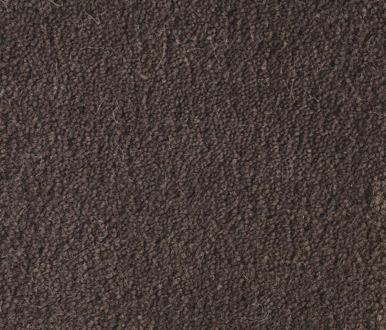 Sencillo Standard brown-5 by Kateha | Rugs