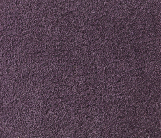 Sencillo Standard lilac-33 by Kateha   Rugs