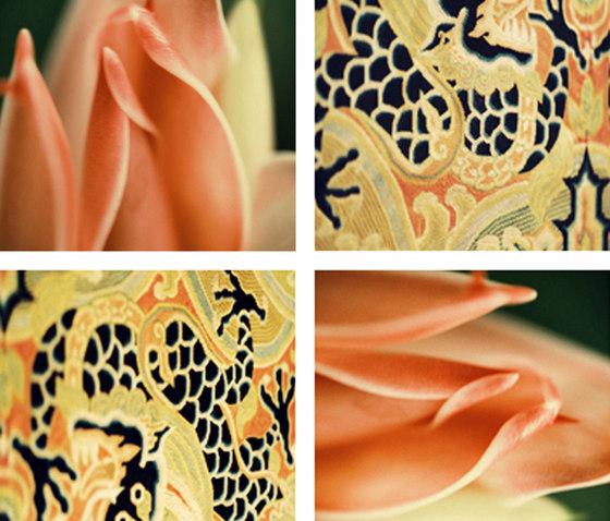 Dragon Scales di tela-design   Fogli di plastica
