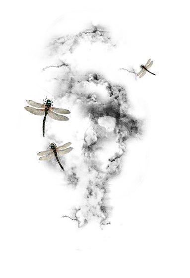 Ilustrations - Wall Art | Dragonflies and clouds design di wallunica | Quadri / Murales