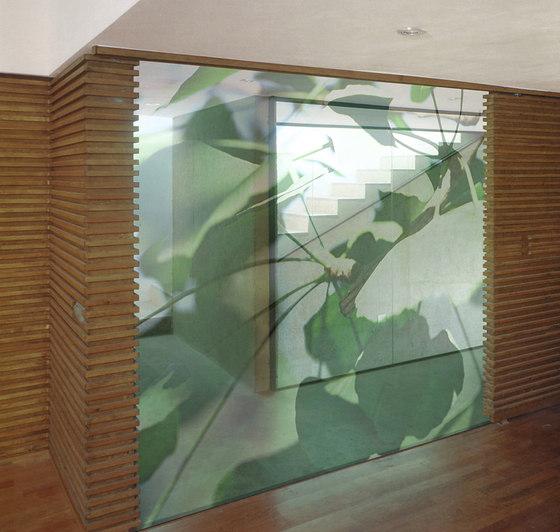 Gingko Dollars di tela-design | Divisori