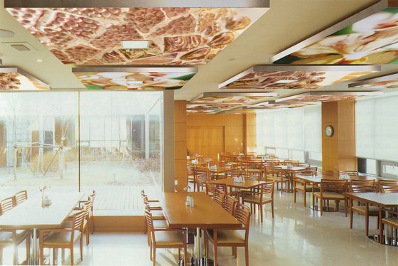 The Orange Salt Of Earth by tela-design | Acoustic ceiling systems