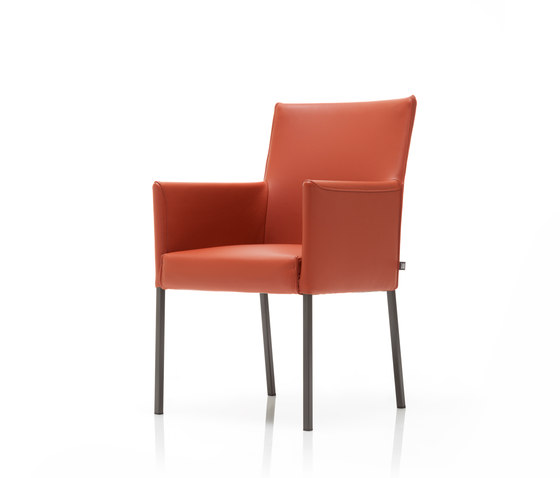 Rolf Benz 652 by Rolf Benz | Visitors chairs / Side chairs