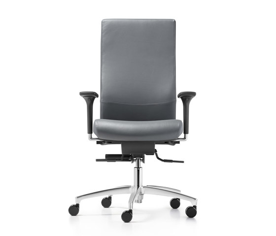 Shape XP Swivel chair by Dauphin | Task chairs