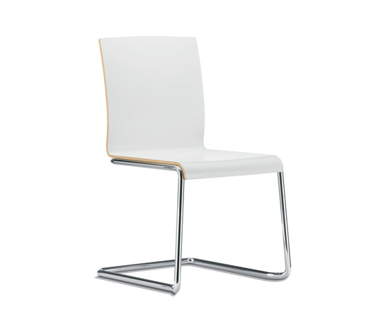Siamo Cantilever chair by Dauphin | Chairs