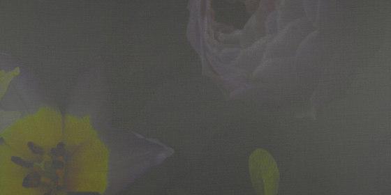 ROSE VOILE - 172 de Création Baumann | Sistemas deslizantes