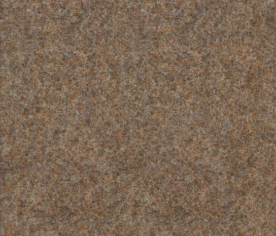 Strong 956-162 by Armstrong | Carpet rolls / Wall-to-wall carpets