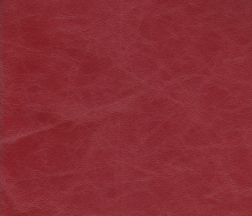 Zeus 05 by Lapèlle Design   Leather tiles