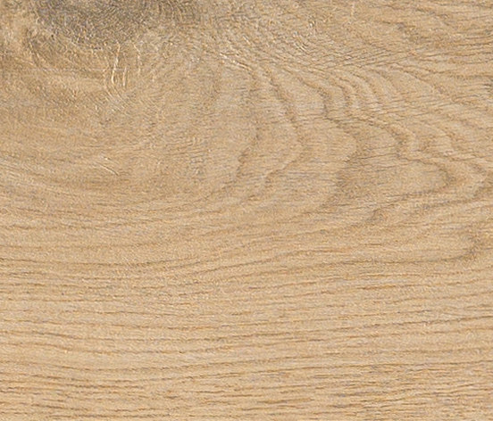 Bio Timber | Oak Patinato Chiaro by Lea Ceramiche | Ceramic slabs