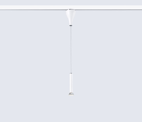 One Eighty Suspension Spot Track Adjustable di serien.lighting | Lampade spot