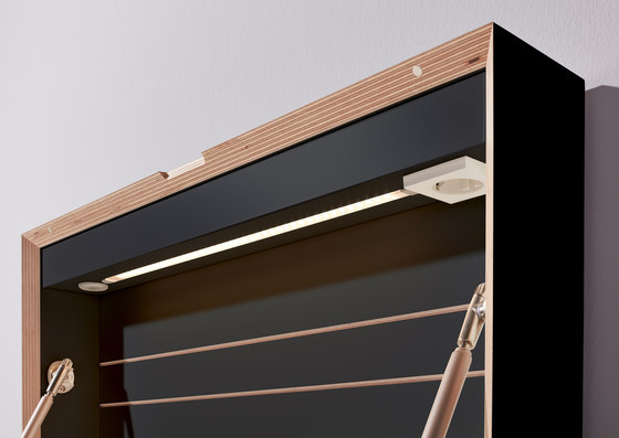 Flatmate CPL black by Müller small living | Desks