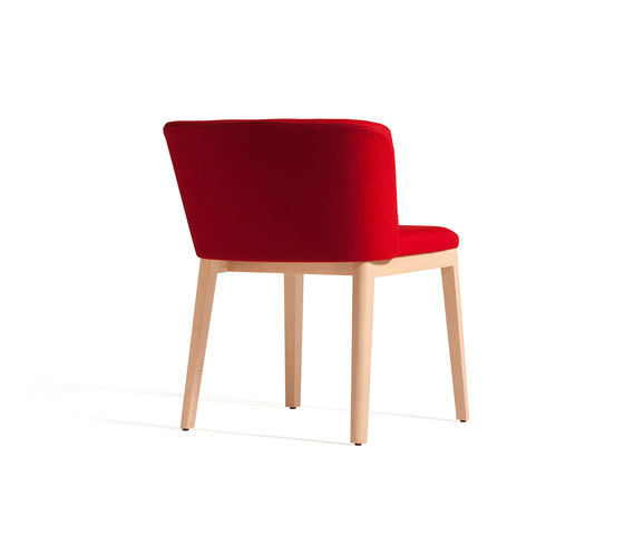 Concord 520 CM by Capdell | Restaurant chairs