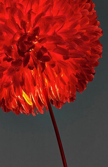 tosa de pluma cubic | Luminaires sur pied