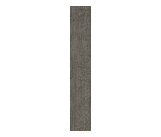 Axi Grey Timber de Atlas Concorde | Carrelage céramique