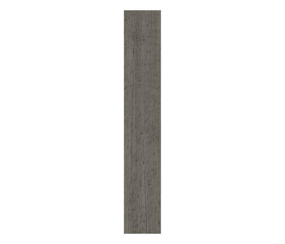 Axi Grey Timber by Atlas Concorde   Tiles