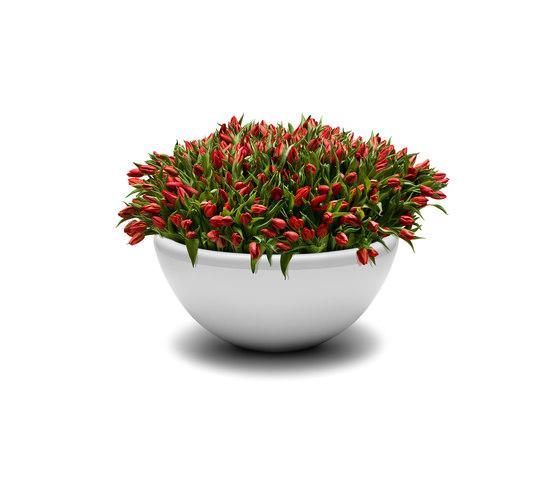 Union Bench Flowerpot by Jangir Maddadi Design Bureau   Plant pots