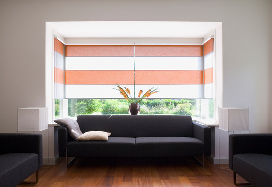 Rollo Shades by Wood & Washi | Panel glides