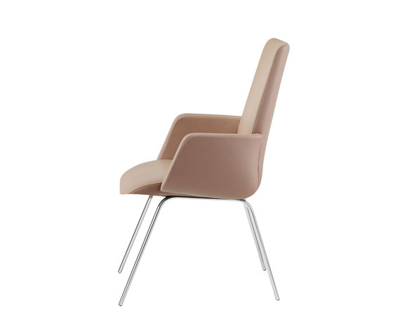Siro| 2090/2091 by Draenert | Chairs