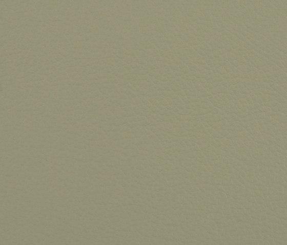 L1020244 de Schauenburg   Cuero natural