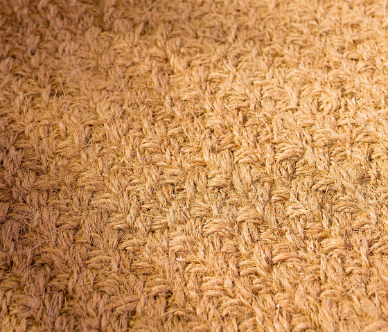 Braid 20393 by Ruckstuhl | Rugs