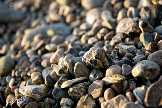 Baltic Sea | Pebbles on the Baltic Sea by wallunica | Wall art / Murals