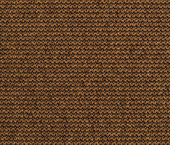Eco Zen 280005-60055 by Carpet Concept | Carpet rolls / Wall-to-wall carpets