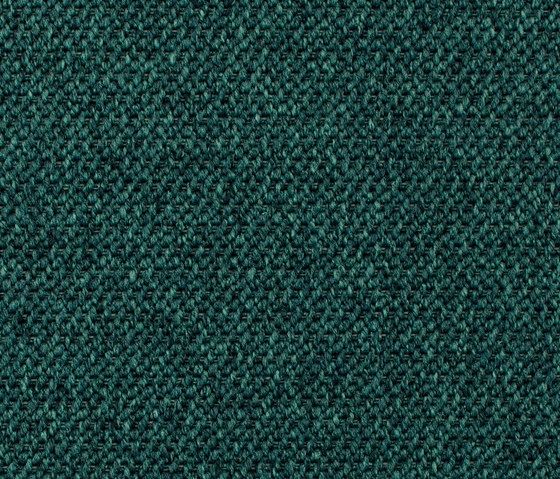 Eco Tec 280009-3845 by Carpet Concept | Carpet rolls / Wall-to-wall carpets