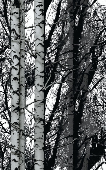 Decors | Structures Wood de Hornschuch | Láminas de plástico