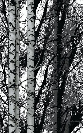 Decors | Structures Wood di Hornschuch | Maglia/rete