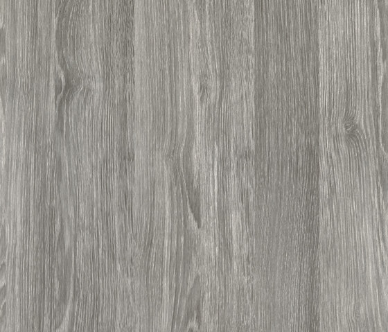 Woods Sheffield Oak perlgrau by Hornschuch | Films