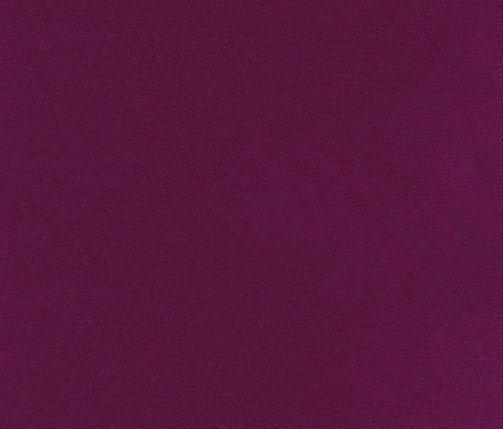 Opus LB 704 58 by Elitis | Curtain fabrics