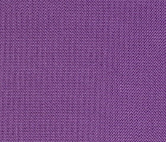 SHAPE - 04 PURPLE by Nya Nordiska | Fabrics