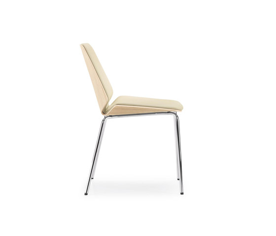 PALA Chair by Girsberger | Restaurant chairs