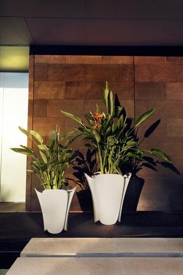 Pezzetina pot by Vondom | Flowerpots / Planters