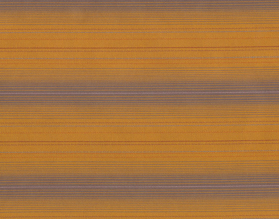 Hold the Line 2326 211 Yellow Line by Anzea Textiles | Recycled cotton