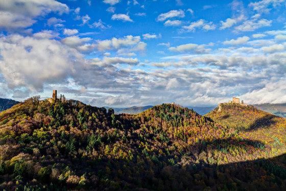 Landscape | Trifels castle in Annweiler by wallunica | Wood panels