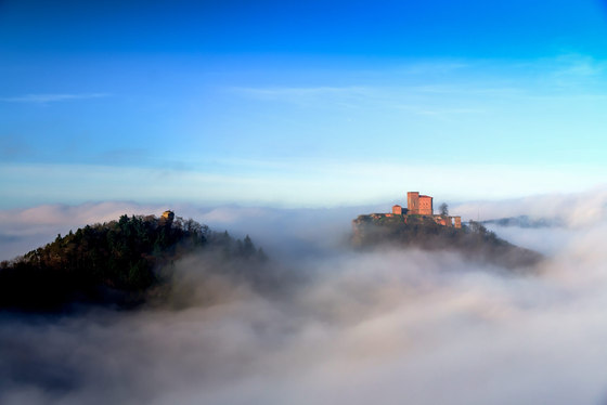 Landscape | Trifels castle in the morning mist by wallunica | Wall art / Murals