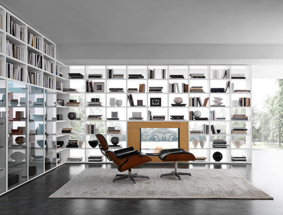 Pari & Dispari Arrangements with fireplaces by Presotto | Wall storage systems