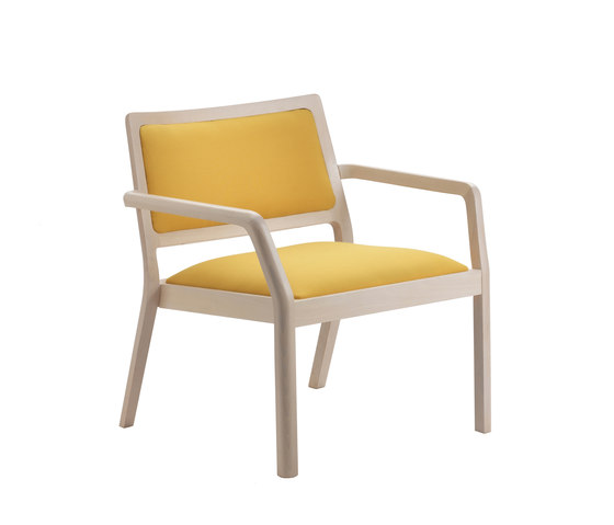MyFrame Lounge Chair by Segis | Lounge chairs