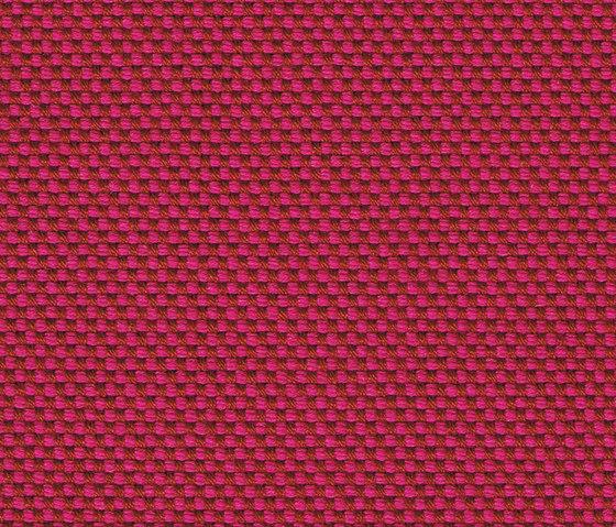 Novum Magenta by rohi | Fabrics