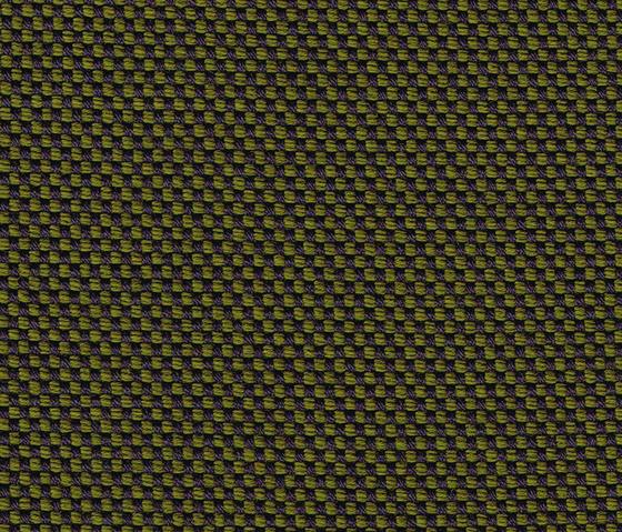 Novum Pinie by rohi | Fabrics